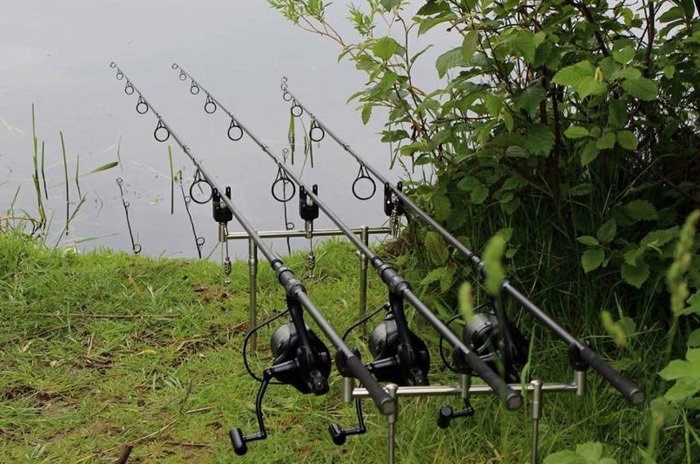 Pêcher la carpe de façon classique