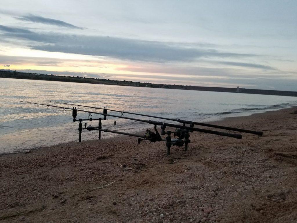 Apprendre à fond: pêche à la carpe de tournoi dans le Colorado