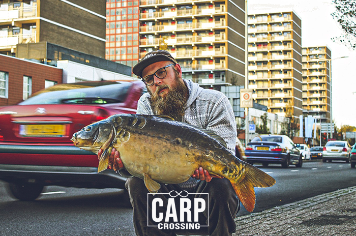 Pêche urbaine à la carpe