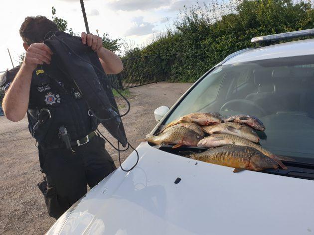 """Surveillez les voleurs de carpes """"très grossiers et méchants"""", déclare un propriétaire de pêche"""