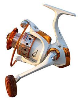 Bobine de pêche 12 + 1 roulement à billes Pêche en eau salée / pêche en eau douce Reel 5.2: 1 gauche / droite Interchange Rocker
