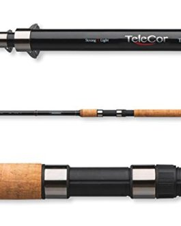 Canne pêche au posé Cormoran TeleCor 170 3,60 m
