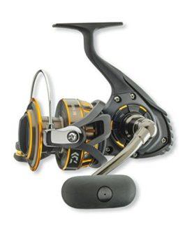 Daiwa BG 6500mer de moulinet à tambour