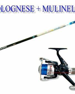 linea-effe Canne à pêche mer lac Bolognaise 5mètres Delta + Moulinet 30