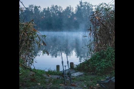 Pêche à la carpe – Quand les étoiles s'alignent – Tommy De Cleen