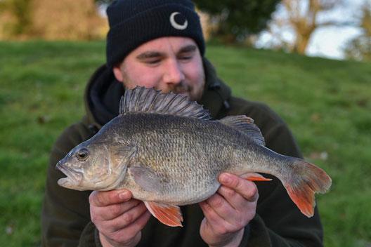Pêche à la carpe – Quelle année! – James Hutton