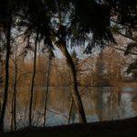 Plans d'hiver à Molyneux