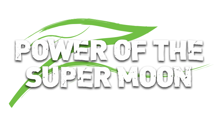 Pêche à la carpe – Le pouvoir de la super lune – Trevor Johnson